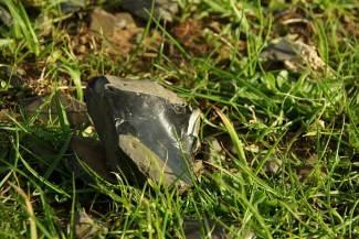 Demenagaki Obsidians